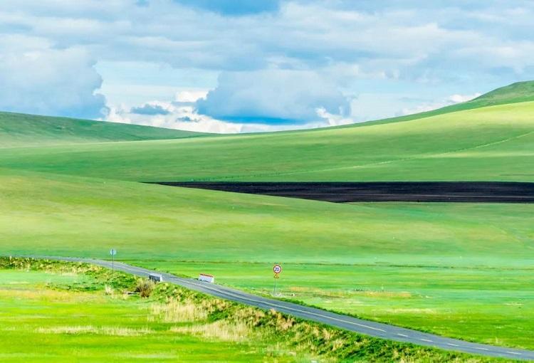 逃离火炉必去-贝尔大草原你向往的地方-凉爽宜人