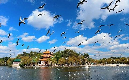 你知道云南最受欢迎的旅游胜地是哪个吗-作为春城的昆明只能排第四